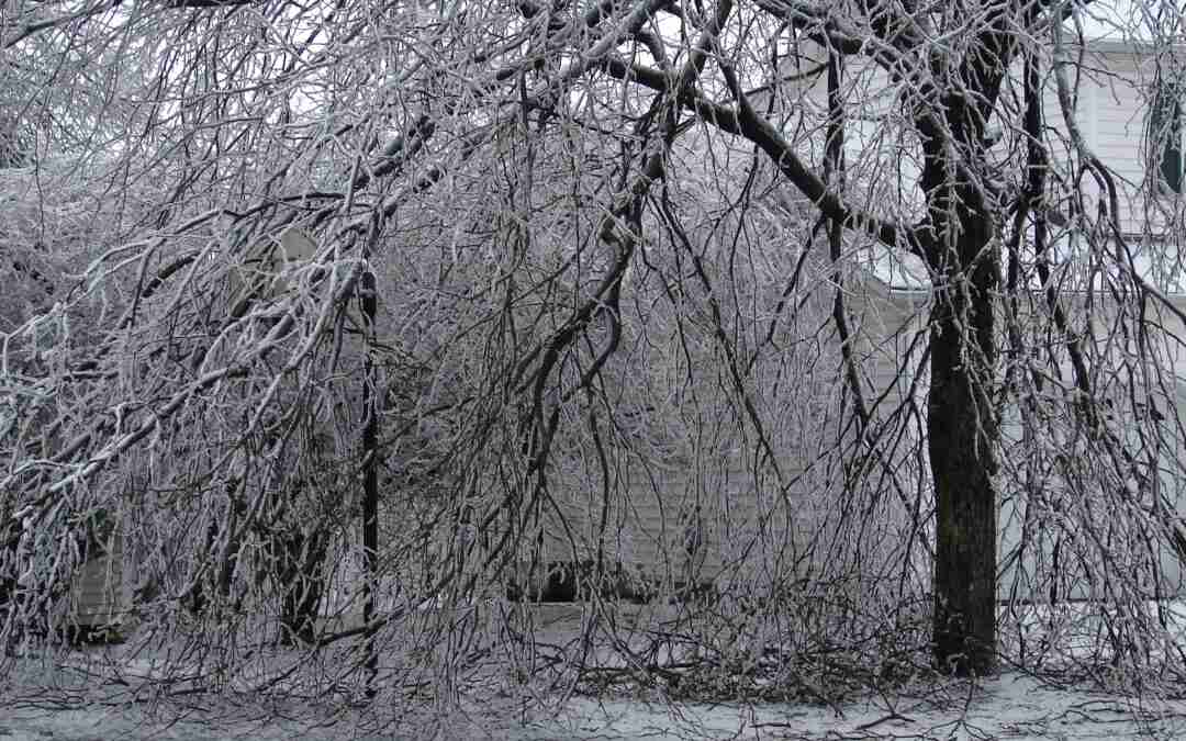 Reliable Electricity in Winter? FERC, Are You Listening?